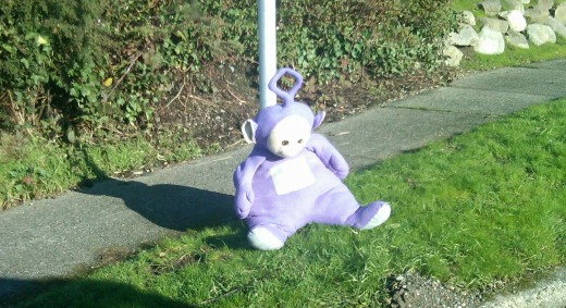 "Neighbor T Woo writes: ""Hope Tinky Winky slept indoors last night as he didn't have his jacket on yesterday when he was found lounging around this street sign on 13th Ave S...."""